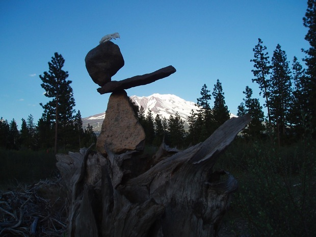 Mount Shasta Bone art  by Steve Crowningshield