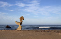 California Coast environmental sculpture by steve crowningshield